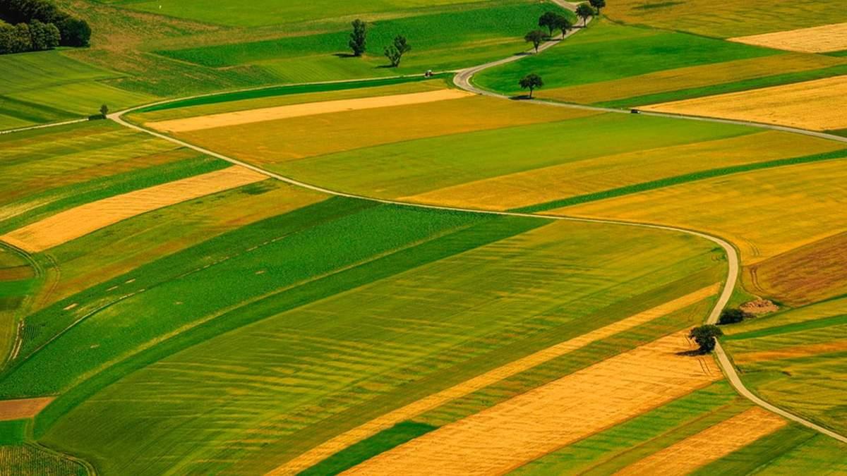 Была в собственности университетов: в Минобразования недосчитались более 24 гектаров земли