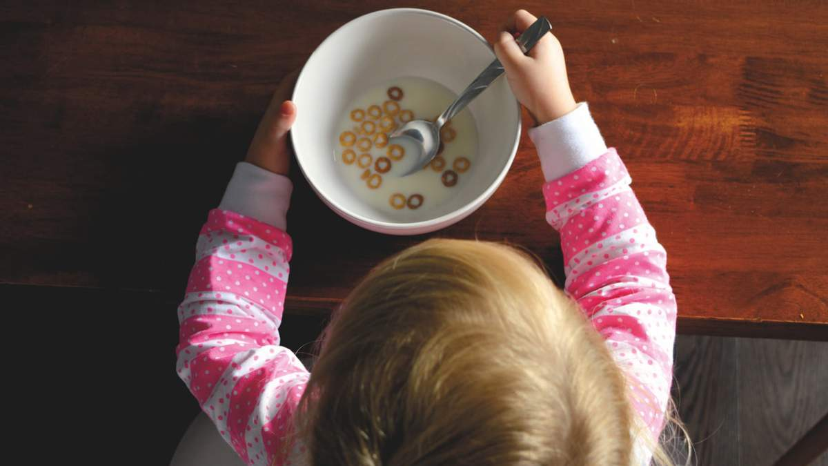 Усовершенствование системы питания: В Украине началась проверка школ