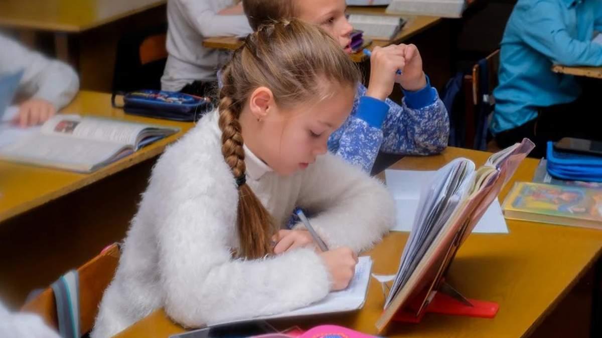 У школах учні зможуть навчатися за авторськими програмами: деталі