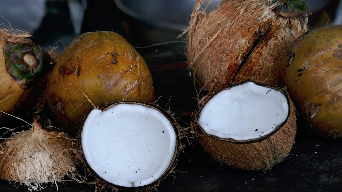 Студенты университета на Бали могут платить за обучение кокосами: детали