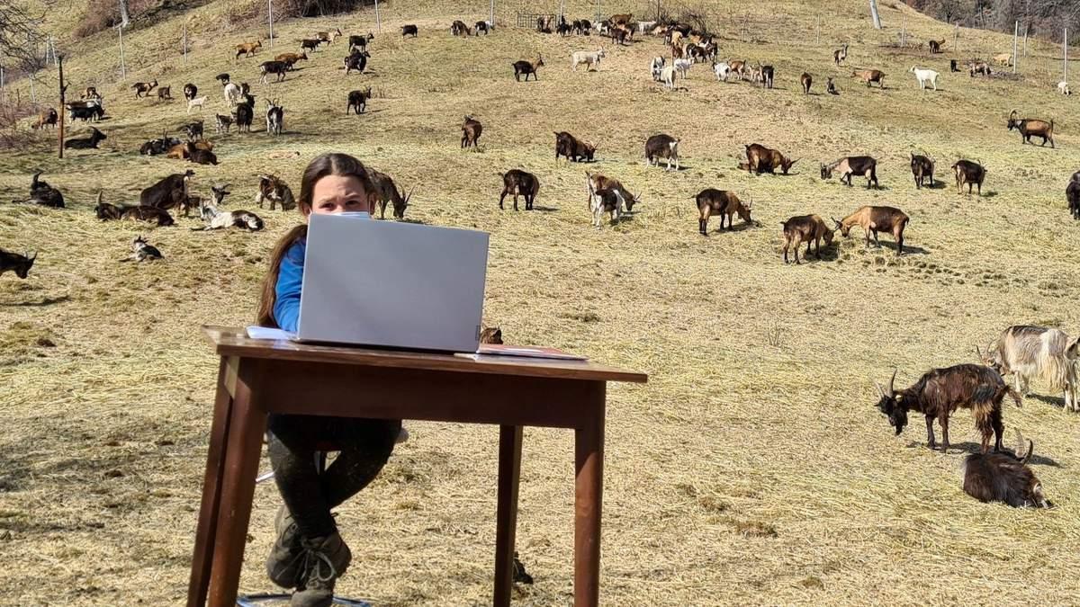 10-летняя девочка из Италии учится дистанционно в горах: фото