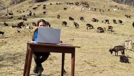 Онлайн-уроки на природе: 10-летняя девочка из Италии учится дистанционно в горах – фото