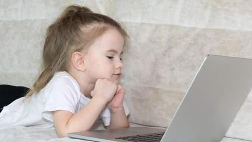 Безпека в кіберпросторі: як організувати освітній процес онлайн – відеолекції
