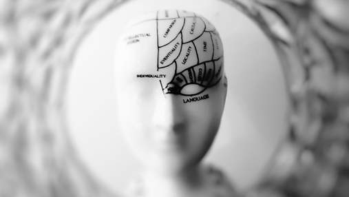 Як швидко опанувати нову навичку та вивчити матеріал: 5 перевірених методів