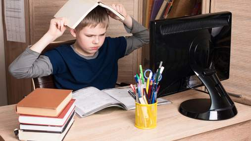 В каких городах Украины школы могут перейти на дистанционное обучение: перечень