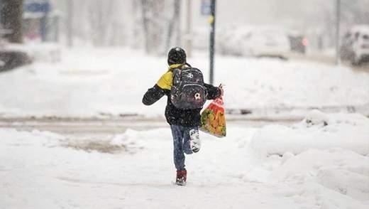 Інформація про подвійні зимові канікули є фейком, – МОН